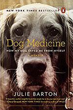 DogMedicine