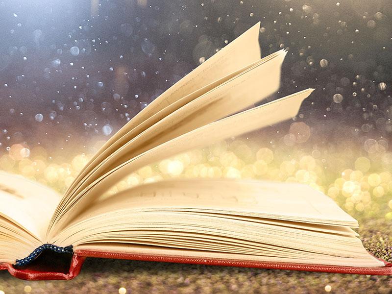 Literary Sense and Sensibility