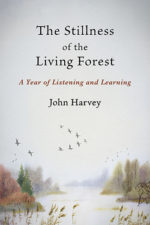 stillness-of-the-living-forest